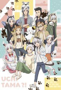 ดูการ์ตูน Uchi Tama Uchi no Tama Shirimasen ka ทามะและผองเพื่อน ตอนที่ 1-11 ซับไทย