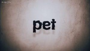 ดูอนิเมะ การ์ตูน Pet ตอนที่ 13 (จบแล้ว) พากย์ไทย ซับไทย อนิเมะออนไลน์ ดูการ์ตูนออนไลน์