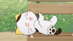 ดูการ์ตูน Uchi Tama Uchi no Tama Shirimasen ka ทามะและผองเพื่อน ภาค1 ตอนที่ 1