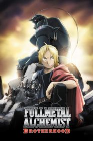 Fullmetal Alchemist Brotherhood แขนกลคนแปรธาตุ บราเทอร์ฮูด ตอนที่ 1-64 พากย์ไทย