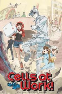 ดูหนังการ์ตูน Hataraku Saibou!! เซลล์ขยัน พันธุ์เดือด ภาค 2 ซับไทย